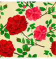 seamless texture stems flower red and pink roses vector image vector image