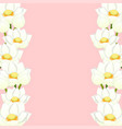 white indian lotus border vector image vector image