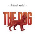 animal world the dog golden retriever background v vector image