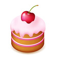 Birthday Cake With Cherry vector image