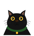 cute black cat funny cartoon character vector image vector image