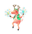 dancing pig with sparklers isolated on the white vector image vector image