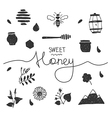 Design elements honey white vector image vector image