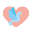 heart with cute dove flying icon vector image vector image
