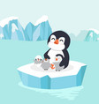 penguin hug chick in north pole arctic vector image vector image