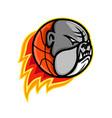 bulldog blazing basketball mascot vector image vector image