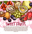 exotic fruit or sweet tropical berry sketch poster vector image vector image