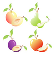 Fruits images vector image