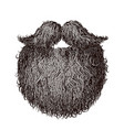 heavy beard and mustache vector image