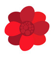 isolated abstract flower icon vector image vector image