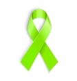 Lime Awareness Ribbon vector image vector image
