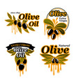 olive oil icons set of olives vector image vector image