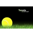 tennis illustration vector image vector image