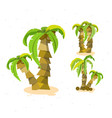 vacation coconut background - set coconut tree vector image vector image