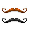 mustache brown and black vector image vector image