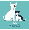 pet friends doggys animal graphic vector image vector image