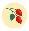 rosehip icon flat vector image vector image