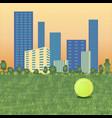 tennis ball on cityscape vector image vector image