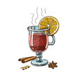 with hand drawn mulled wine vector image