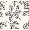 grains of coffee vector image