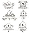 Set Luxury Logos vector image