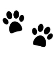 black paw print on white vector image vector image