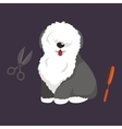 Dog hair hygiene Set Pet vector image