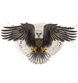 eagle flying bald eagle vector image vector image