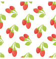 goji berries seamless pattern vector image vector image
