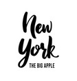 new york the big apple - hand drawn lettering vector image