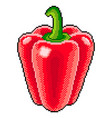 pixel sweet pepper detailed isolated vector image vector image