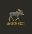 american moose or eurasian elk engraved hand drawn vector image vector image