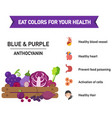 eat colors for your health blue amp purple vector image vector image