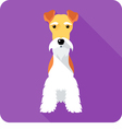 Fox Terrier dog sits icon flat design vector image vector image