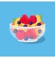 Glass Bowl with Fruit and Berries vector image