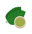 mitragyna speciosa kratom leaf with powder vector image vector image