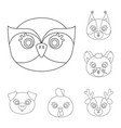 muzzles of animals outline icons in set collection vector image vector image