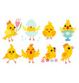 set cute cartoon chicken characters for easter vector image