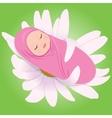 sleeping babe in daisy