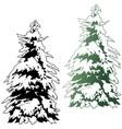Snowy Coniferous Tree vector image vector image