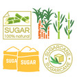sugar and sugar cane labels icons vector image vector image