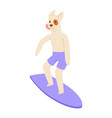 surf dog animal surfer character surfing on vector image