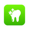 tooth icon green vector image vector image