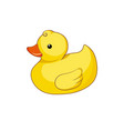 yellow duck isolated on white background vector image vector image