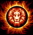 zodiac sign of lion in fire circle vector image