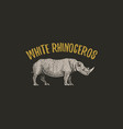 white rhinoceros engraved hand drawn in old sketch vector image