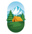 camping ground design flat vector image