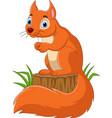 cartoon funny squirrel on tree stump vector image vector image