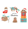 cute sloths funny christmas with vector image
