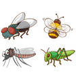 isolated picture different insect vector image vector image